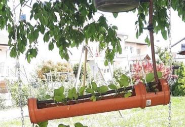 Erster Platz bei Jugend Forscht im Bereich Arbeitswelt für Lukas Knauer – vertical-farming
